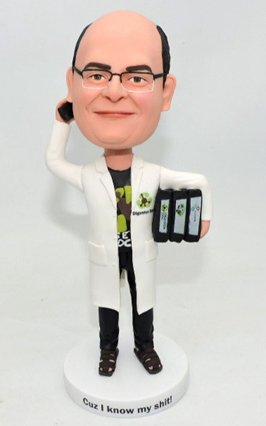 Custom Custom Bobblehead For Scientist